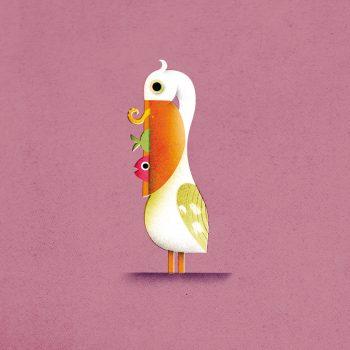 Pellicano - Illustrazione di Philip Giordano