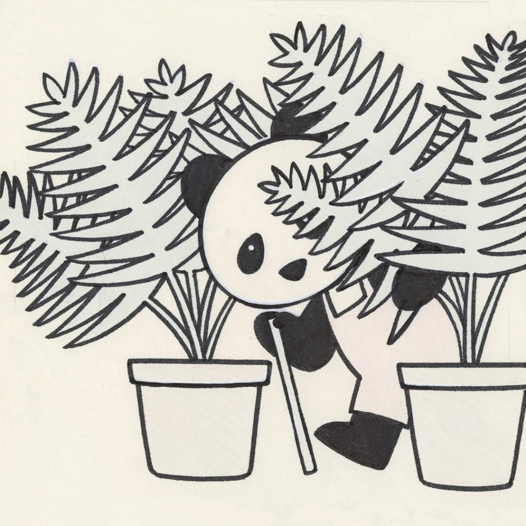 Pandi esploratore - Illustrazione di Tony Wolf